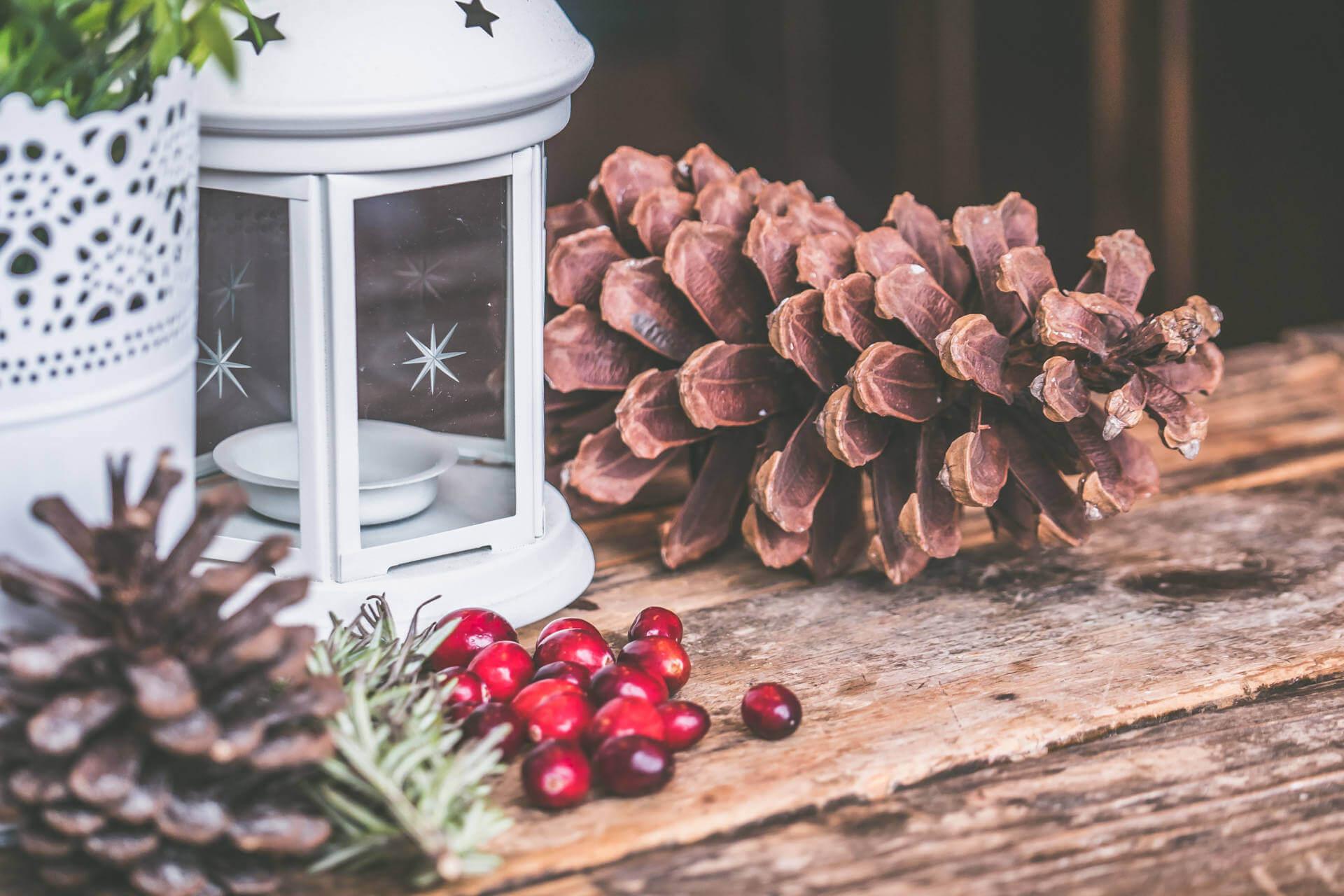 Pranzo di Natale a Grosseto al Ristorante Casa Livia